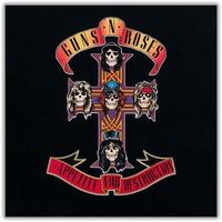 Guns N' Roses : Appetite for Destruction: Locked N'Loaded