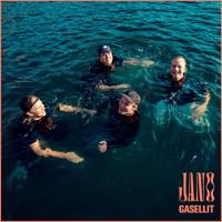 Gasellit: Jano