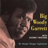 Doobie Twisters: Mr. Boogie Woogie Nighthawk
