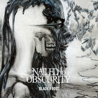 Nailed To Obscurity: Black Frost