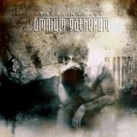 Omnium Gatherum: Years in waste