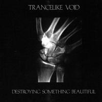 Trancelike Void: Destroying Something Beautiful