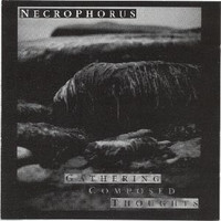 Necrophorus: Gathering Composed Thoughts