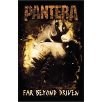 Pantera : Far Beyond Driven