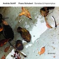 Schubert, Franz: Sonatas & impromptus