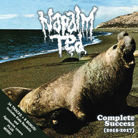 Napalm Ted: Complete Success (2015-2017)