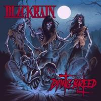 Blackrain: Dying breed