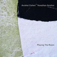 Cohen, Avishai: Playing the room