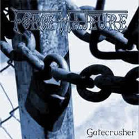Force Majeure: Gatecrusher