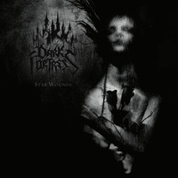 Dark Fortress: Stab Wounds