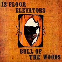 13th Floor Elevators: Bull Of The Woods