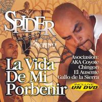 Spider (rap): La Vida De Mi Porbenir