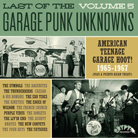 V/A: Garage Punk Unknowns Volume 5