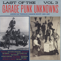 V/A: Garage Punk Unknowns Volume 3