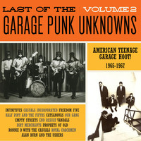 V/A: Last Of The Garage Punk Unknowns Volume 2