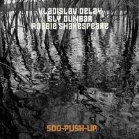 Vladislav Delay: 500-Push-Up