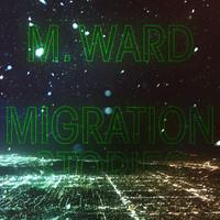 Ward, M.: Migration stories