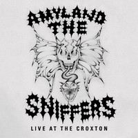 Amyl And The Sniffers: Live at the croxton