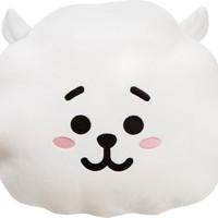 BTS: Bt21 rj cushion