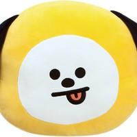 BTS: Bt21 chimmy cushion