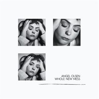 Olsen, Angel: Whole new mess