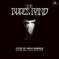 Budos Band: Long in the Tooth