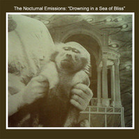 Nocturnal Emissions: Drowning in a sea of bliss (grey vinyl)
