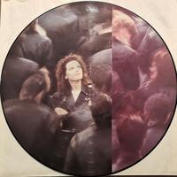 Benatar, Pat: Wide Awake In Dreamland - Picture Disc