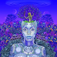 Badu, Erykah: New amerykah part two: return of the ankh