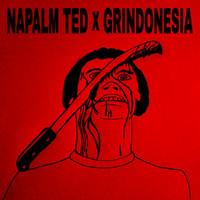 Napalm Ted: Split