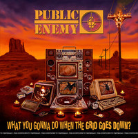 Public Enemy : What You Gonna Do When The Grid Goes Down?