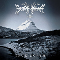 Borknagar: True North