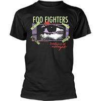 Foo Fighters: Medicine at midnight taped