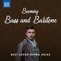 V/A: Booming bass and baritone: best loved opera arias