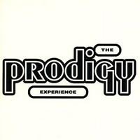 Prodigy: Experience