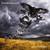 Gilmour, David : Rattle That Lock - CD + DVD