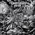 Deserted Fear : Dead Shores Rising - LP