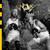 WÖYH! : KRTKRTK - CD