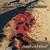 Mattsson, Lars Eric : Sand and Blood - CD