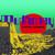 Mudhoney : Digital Garbage - Cassette