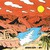 Altin Gün : On - CD