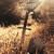 Wytch Hazel : III: Pentecost - LP